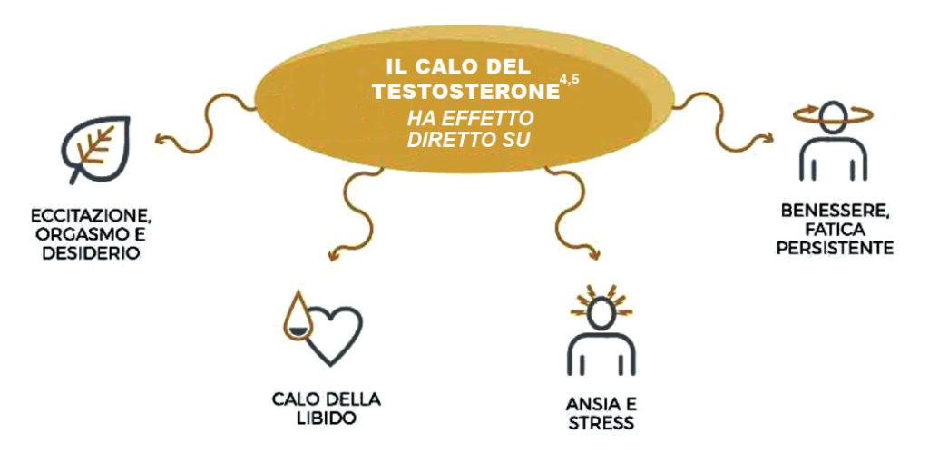 Il testosterone